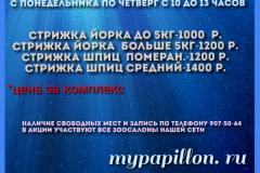 photocollage_201871153818468