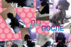PicsArt_10-16-11.47.58